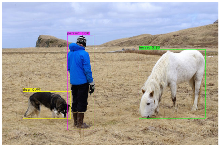 yolov4: person, horse, dog