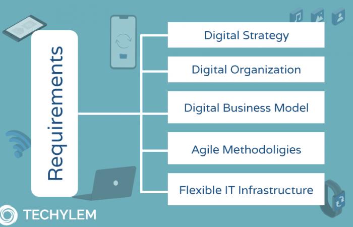 Requirements of Digitalization